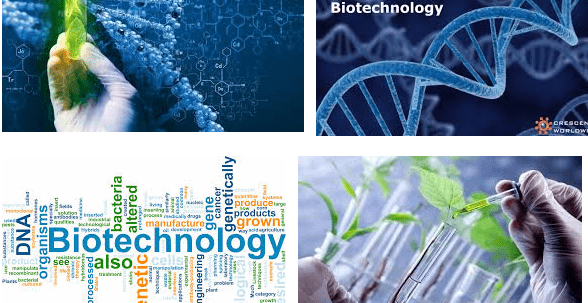 Starting Salary Of Biotechnology In Pakistan