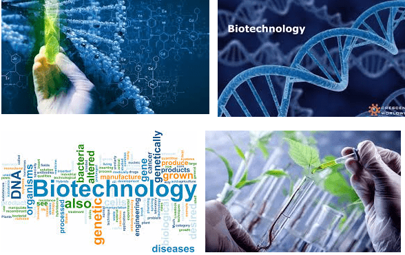 Starting Salary Of Biotechnology In Pakistan