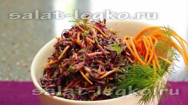 Салат из красной капусты: рецепты с фото