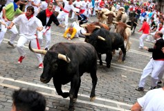 Fiesta De San Fermin Running Of The Bulls - Day 8