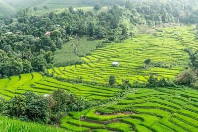 Viaje de aventura en grupo Vietnam8