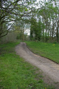 A stretch of widened path