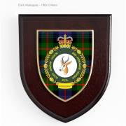 SA Legion Shield with tartan background