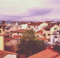 Florence Rooftops.