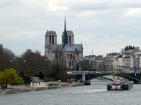 Notre-Dame from Afar.