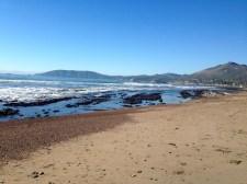 California Winter.
