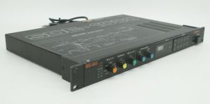 Rack Mount Roland SDE-1000 Digital Delay Signal Processor SDE1000 #998