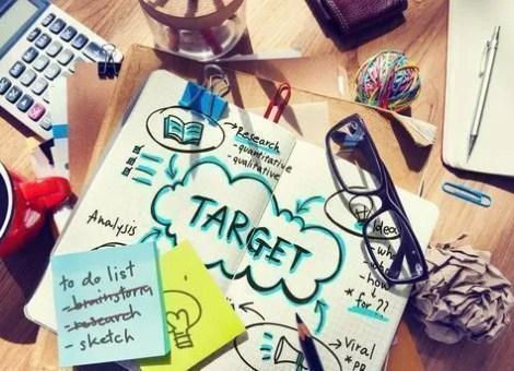 publico objetivo-target