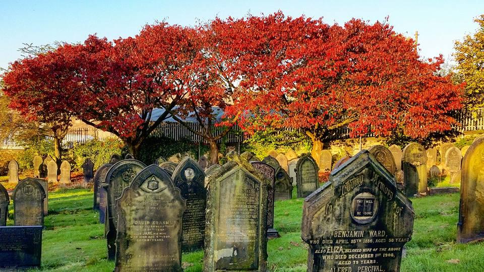 4) Antony Mills - Autumn in Weaste Cemetery