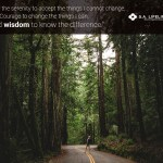serenity prayer wisdom
