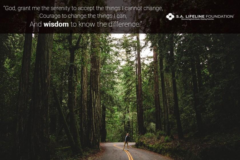 knowledge vs. wisdom