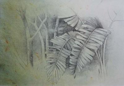 dibujo 64 - 29x21
