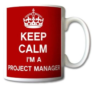 I´m a Project Manager