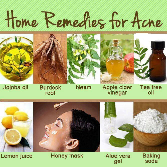 Image Result For Aloe Vera And Tea Tree Oil For Acne