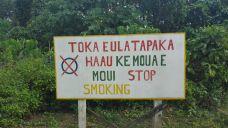 No fumar!