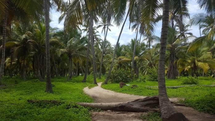 Camino a Cabo San Juan