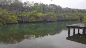 De los lugares más románticos de la Isla Santa Cruz