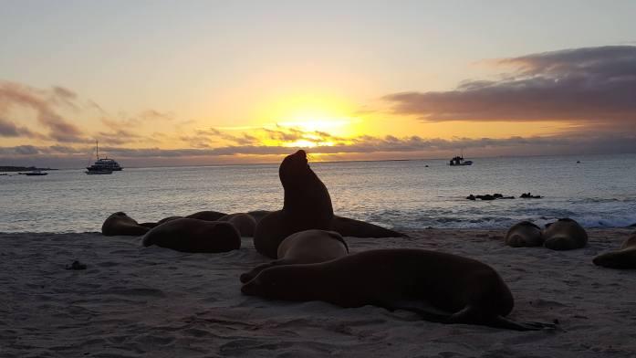 Un atardecer en Islas Galápagos