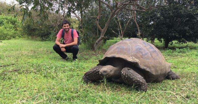 Tortuga gigante en Islas Galápagos