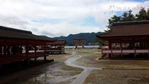 Vista de la gran Torii