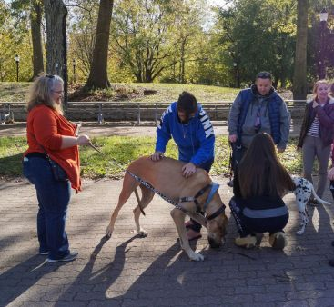 Amy Wojtowicz photo. Students enjoy the company of emotional support dogs at Recycle Madness.