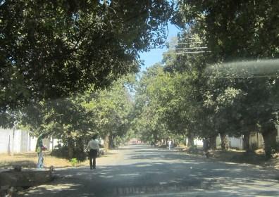 Lusaka, city (7)
