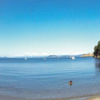 From the beach at Watmough Bay