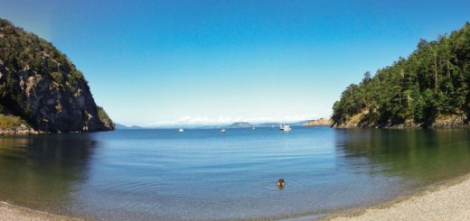From the beach at Watmough Bay