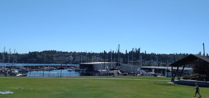 Looking across Mike Wallace Park to the Port of Kingston Marina. (Photo by Rose Prince)