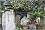 cementerio abney park londres 2011 (2)
