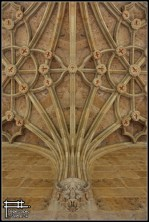 simetria leon 2013 (1)