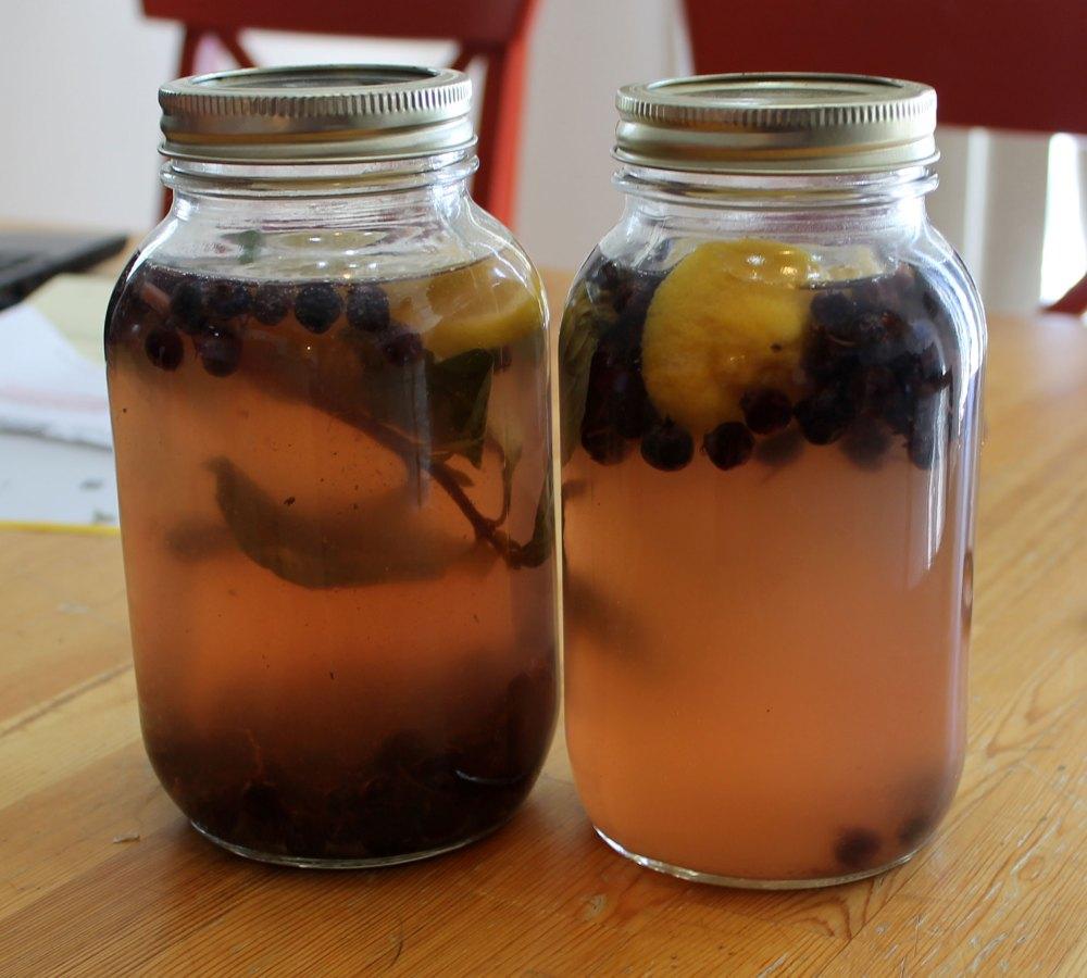 Water Kefir Soda (4/6)