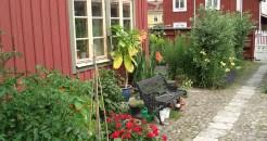 jennygården02