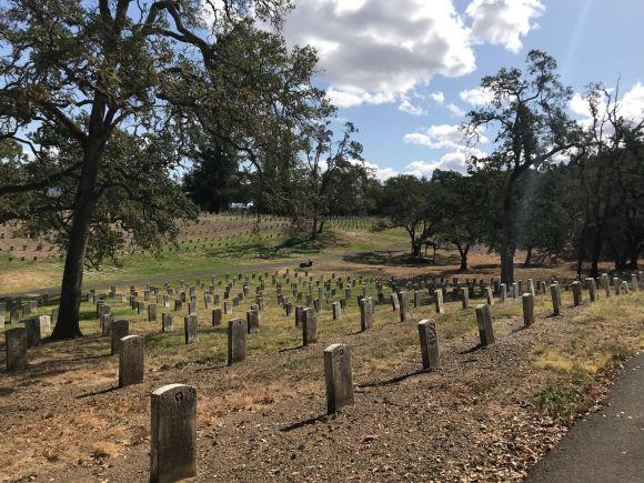 Photo by Melissa Van Gogh on Unsplash graves