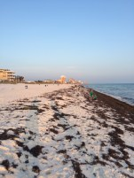 More Gulf Coast