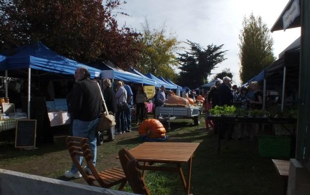 Lincoln Pumpkin Festival 23