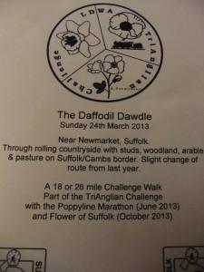Daffodil Dawdle