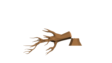 dead-tree2