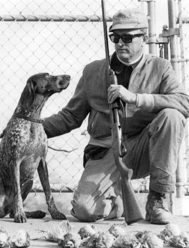 Pop_dog