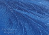 Winter frost ice patterns on blue metal car look lik feathers leaves