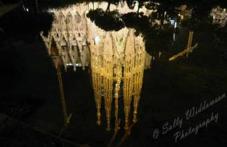 Basilica de la Sagrada de Familia Barcelona Spain reflected in ornamental pond at night