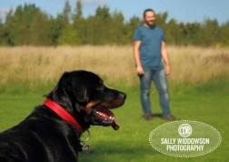Roo Proctor doberman dog portrait profile head shot man in backgroundSally Widdowson Photography