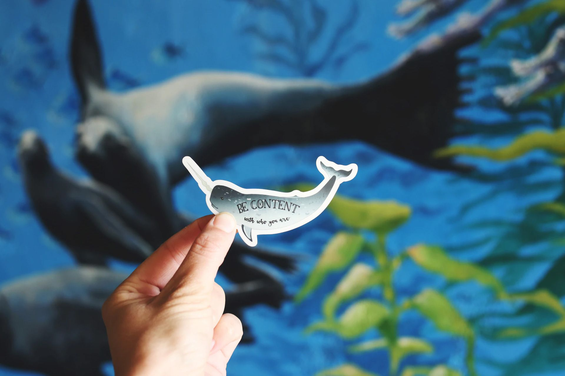 Be Content written on a Dolphin Cutout