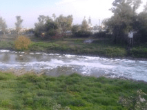 espuma rio martes