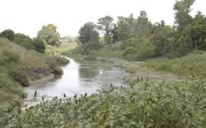 UG y Distrito de Riego 011 plantean estudiar el Río…