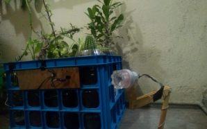 Alumnos de la Prepa Salamanca crean lámpara ecológica; obtiene energía…