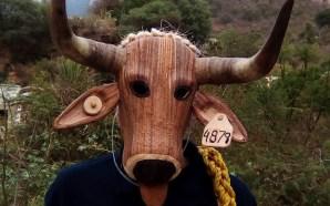 El IEC entrega premios en concurso de máscaras de Robenos