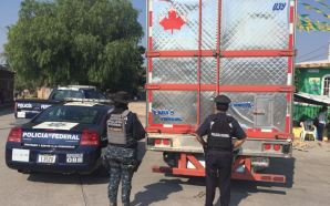 POLICÍA FEDERAL EN DIFERENTES OPERATIVOS EN CELAYA, LEÓN E IRAPUATO…