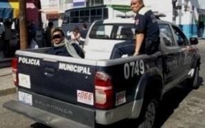 LA CIUDADANÍA CANSADA ESTA ACTUANDO DE MANERA ORGANIZADA CONTRA LA…