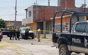 Elementos de fuerzas de seguridad pública del estado y policías…
